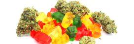 Bonbons au cannabis: c'est tout sauf des friandises!