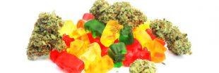 Bonbons au cannabis : c'est tout sauf des friandises !