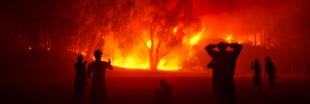 Pendant que le monde scrute l'Amazonie, l'Afrique subsaharienne aussi est en feu