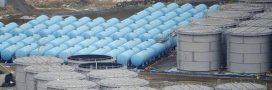 Les eaux contaminées de Fukushima vont-elles finir dans le Pacifique?