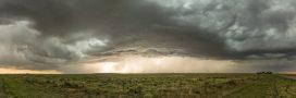 Comment faire pour bien protéger son jardin des orages