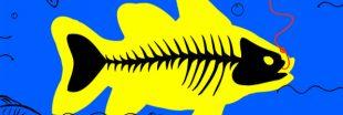 Victoire - La pêche électrique officiellement interdite dans les eaux françaises !