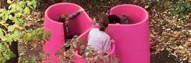 Enfin des urinoirs collectifs pour femmes en France
