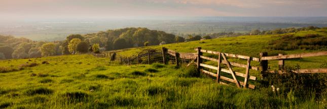 Le top 20 des pays les plus durables en matière d'agriculture