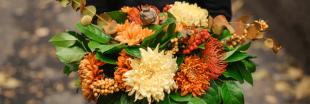 Bouquet de saison : quelles fleurs en automne ?