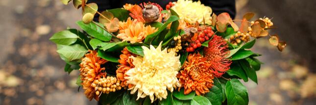 Bouquet de saison: quelles fleurs en automne?