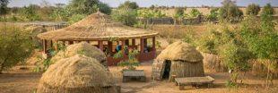 Portrait d'éco-acteur : Aduna'm, centre éco-touristique, reverdit le Sénégal