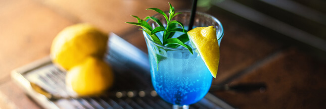 Comment utiliser la verveine citronnelle en cuisine : 20 idées recettes