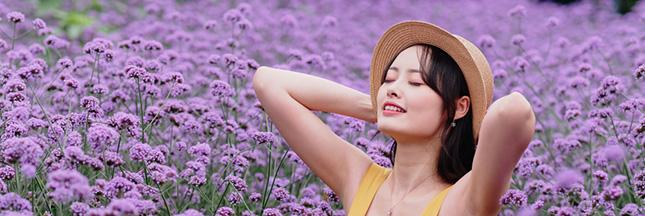 Utilisez la verveine odorante et la verveine officinale en beauté naturelle