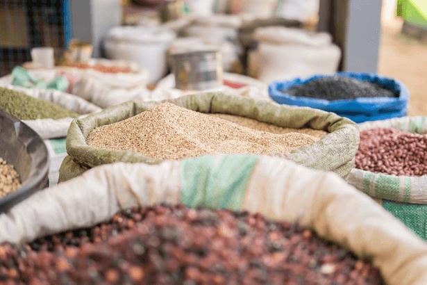 e-agriculture afrique