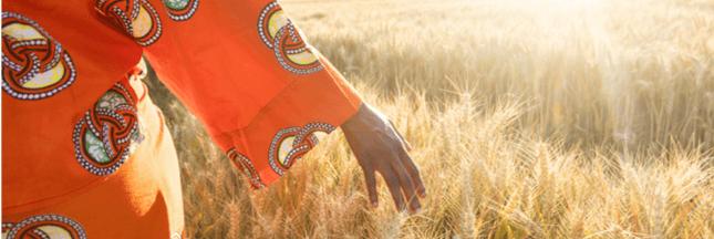 Quelle stratégie pour l'agriculture en Afrique?