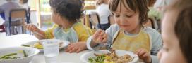 Les scientifiques appellent les maires à réduire la consommation de viande dans les cantines