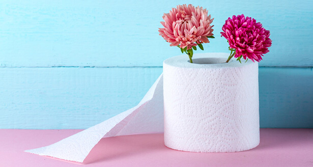 desodorisant wc maison
