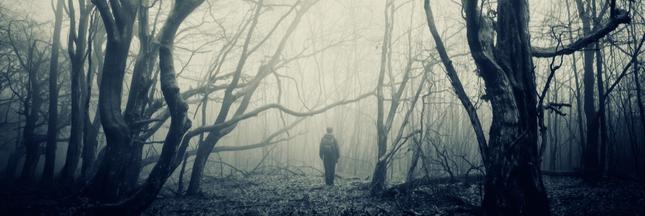 Feux zombies, forêts fantômes... Cette année, Halloween c'est le climat !
