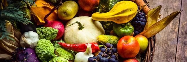 Cuisinez les légumes de saison en novembre : le panier AMAP