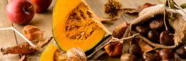 Le potiron, votre allié antioxydant de l'automne