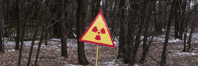 Votre bois de chauffage pourrait être radioactif!