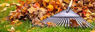 Amender son sol et travailler la terre en automne pour préparer l'hiver