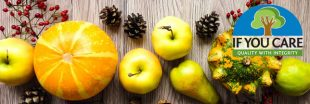 Quels aliments pour manger de saison en décembre?