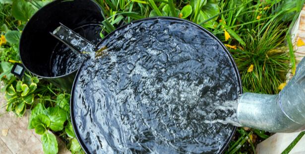 eau de pluie potable