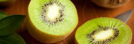 Comment faire germer un pépin de kiwi