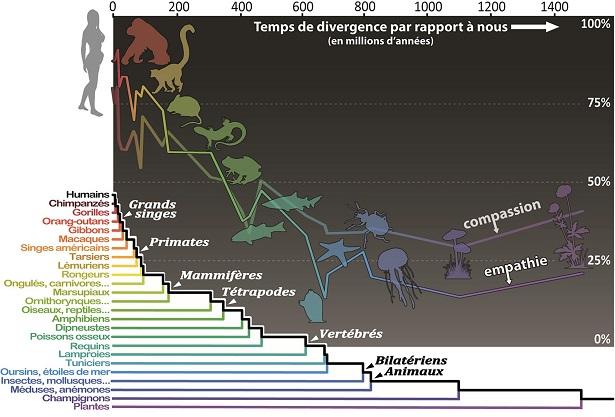 carte affective biodiversite