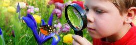 4 bienfaits avérés des sciences participatives