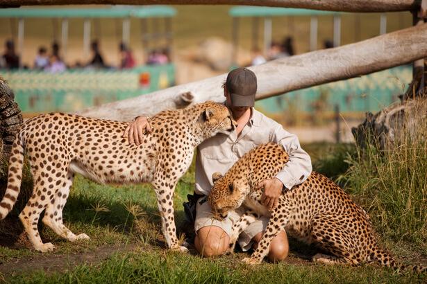 zoo sauver animaux