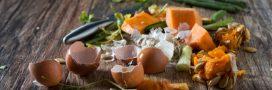Compostez dans votre cuisine grâce au bokashi