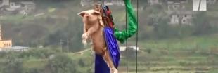 La vidéo choc d'un cochon qui saute à l'élastique en Chine