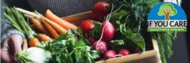 Manger de saison en février: fruits et légumes, viandes, poissons, fromages