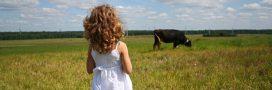 Bien-être animal – Des annonces gouvernementales en demi-teinte