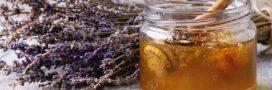 Miel: la récolte 2019 divisée par deux