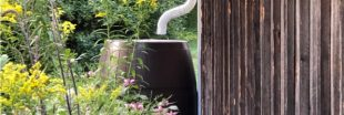Comment entretenir son récupérateur d'eau de pluie