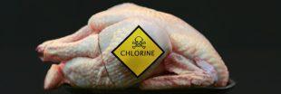 Bientôt du poulet américain au chlore dans vos assiettes ?