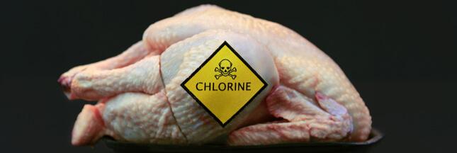 Bientôt du poulet américain au chlore dans vos assiettes?