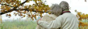 Réforme des retraites : calculez l'état actuel de votre pension