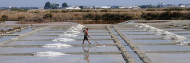 Le sel de Guérande va-t-il disparaître à cause de la pollution ?