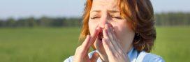 Faire face aux allergies au pollen