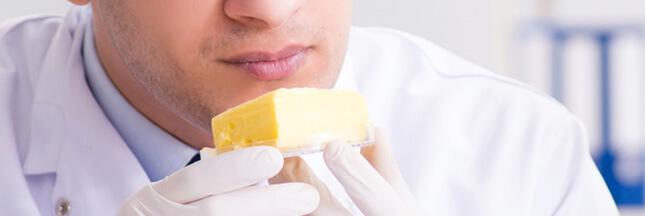 Du beurre d'insectes bientôt dans vos assiettes ?