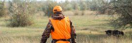 Vers l'ouverture de la chasse deux mois plus tôt?