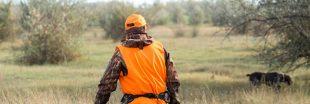 Vers l'ouverture de la chasse deux mois plus tôt ?