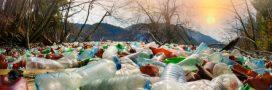 Participez à un grand concours pour lutter contre les déchets marins