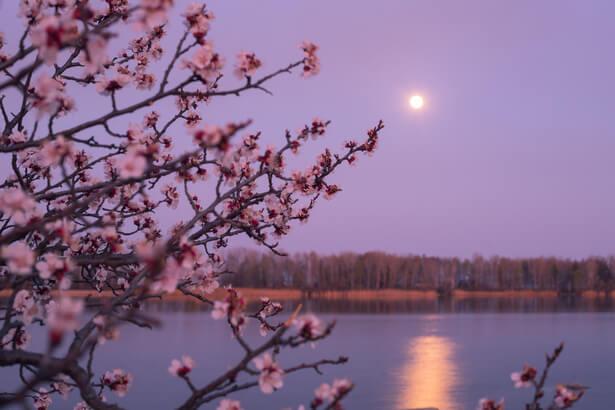 ciel avril