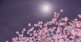 Que voir dans le ciel en avril2021?
