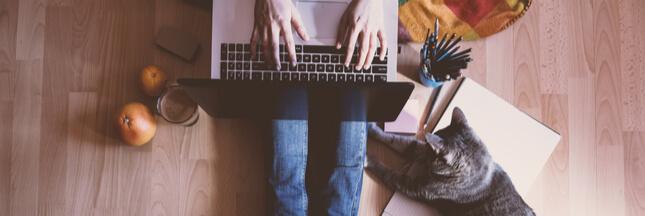 Confinement: 9 idées intelligentes à faire sur son ordinateur