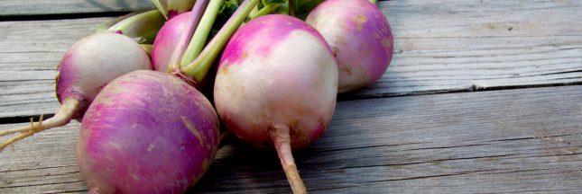 8 façons de cuisiner les navets pour ceux qui n'aiment pas