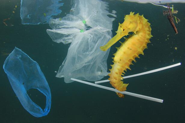 plastique disparu , plastique oceans