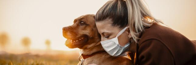 Peut-on transmettre un virus à son animal de compagnie?