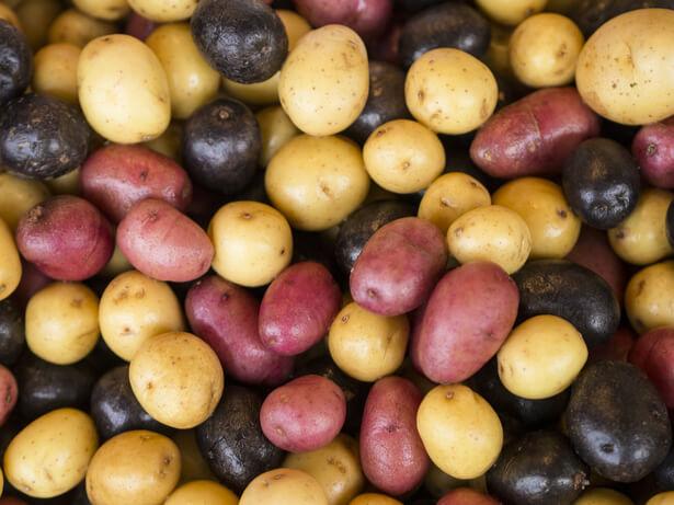 tour à pomme de terre